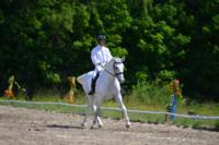 В Ясной поляне стартовал турнир по конному спорту, Фото: 117