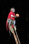Цирк «Вива, Зорро!» в Туле , Фото: 34