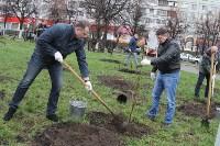 В сквере «Тульское чаепитие» высадили 100 саженцев вишни, Фото: 4