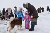 Праздник северных собак на Куликовом поле , Фото: 10