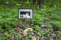 Кладбище домашних животных в Туле, Фото: 41