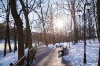 Морозное утро в Платоновском парке, Фото: 5