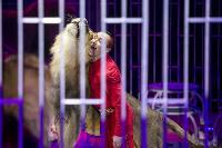 Шоу фонтанов «13 месяцев» в Тульском цирке – подарите себе и близким путевку в сказку!, Фото: 79