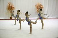 """Соревнования по художественной гимнастике """"Осенний вальс"""", Фото: 68"""