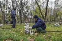 Высадка деревьев в Рогожинском парке, Фото: 4