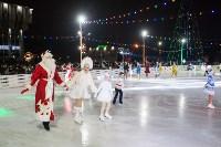 Туляки отметили Старый Новый год ледовым шоу, Фото: 39