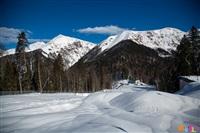 Состязания лыжников в Сочи., Фото: 28