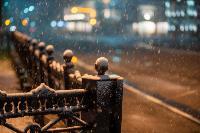 Апрельский снегопад - 2021, Фото: 79