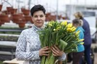 Тюльпаны , Фото: 41