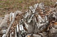 В лесу в Узловском районе обнаружена свалка ртутных ламп, Фото: 9