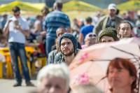 Фестиваль, Фото: 58