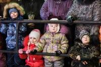 Главную ёлку Тулы открыли грандиозным фейерверком, Фото: 4