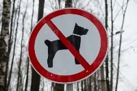 В Комсомольском парке прошёл рейд по выявлению собачников-нарушителей, Фото: 1