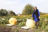 Гигантские тыквы из урожая семьи Колтыковых, Фото: 20