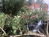 Дерево упало на авто, Фото: 6