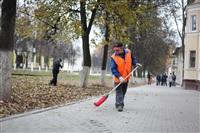 Тульские жилищники вышли на субботник, Фото: 12