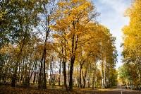 Золотая осень в Туле-2019, Фото: 67