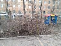 Сильный ветер в Туле повалил деревья, Фото: 6