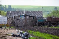 Коровы, свиньи и горы навоза в деревне Кукуй: Роспотреб требует запрета деятельности токсичной фермы, Фото: 4