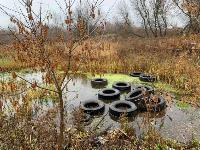 Под Новомосковском ликвидированы две незаконные свалки, Фото: 7