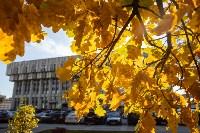Золотая осень в Туле-2019, Фото: 82