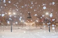 Сказочная зима в Туле, Фото: 11