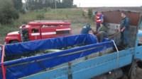 Узловские пожарные спасли двух белух, Фото: 7