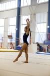 Спортивная гимнастика в Туле 3.12, Фото: 132