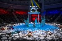 Тульский цирк, Фото: 1