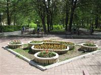 В Туле ко Дню Победы высадили 88, 5 тысяч цветов, Фото: 9