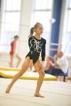 Спортивная гимнастика в Туле 3.12, Фото: 92