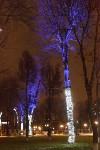 Украшение парка к Новому году, 15.12.2015 , Фото: 41