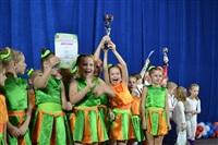 Открытый Чемпионат Тульской области по черлидингу, Фото: 52