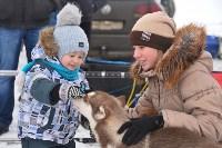 Праздник северных собак на Куликовом поле , Фото: 4