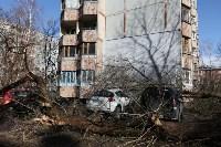 Последствия урагана. 16.04.2015, Фото: 14