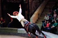 Цирк «Вива, Зорро!» в Туле , Фото: 83