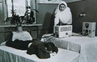 Физиокабинет полиомиелитного отделения, 1950-е годы., Фото: 14