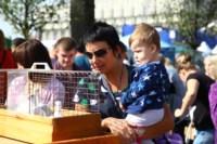 День города - 2014: выставка птиц и бассейн с живыми рыбами, Фото: 1