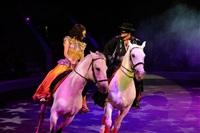 Цирк «Вива, Зорро!» в Туле , Фото: 80