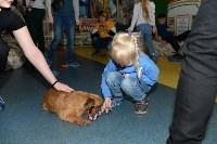 Выставка собак DogLand, Фото: 11