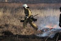 Сразу в нескольких районах Тульской области загорелись поля, Фото: 2
