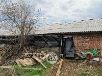 Чернский район, умерли 150 коров, Фото: 1