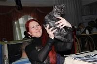 В Туле прошла международная выставка кошек, Фото: 9