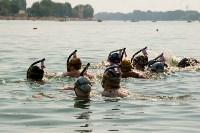 Тулячка взяла серебро на первенстве Европы по плаванию в ластах, Фото: 2