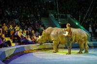 Туляков приглашают на новогоднее представление «Ёлка в цирке», Фото: 68