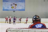 Международный детский хоккейный турнир. 15 мая 2014, Фото: 77