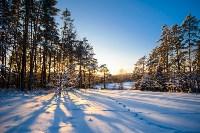 Снежное Поленово, Фото: 55