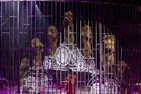 Шоу фонтанов «13 месяцев» в Тульском цирке – подарите себе и близким путевку в сказку!, Фото: 65