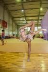 Открытый кубок региона по художественной гимнастике, Фото: 8