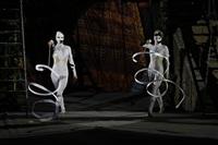 В Тульском цирке прошла премьера аква-шоу, Фото: 31